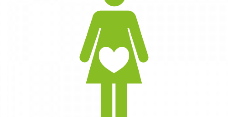 Infographic of female figure with a heart where her stomach is indication pregnancy or fertility