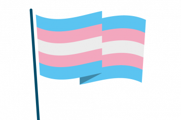 Infographic of trans flag